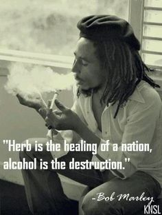 Bob Marley quote on smoking marijuana drinking alcohol. Ain't that the truth! Ganja, Weed Quotes, Stoner Quotes, 420 Quotes, Stoner Humor, Eminem Quotes, Rapper Quotes, Weed Memes, Weed Humor