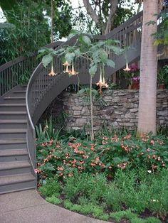 Idées d'escaliers pour jardin | Le journal du jardin Hillside Landscaping, Staircases, Garden Bridge, Garden Ideas, Landscapes, Decorating Ideas, Stairs, Yard, Outdoor Structures