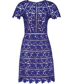 Womens Sapphire Lace Dress - Reiss Orchid
