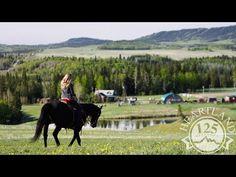 Heartland CA Season 8 Episode 4 - Secrets and Lies Full Episode - YouTube