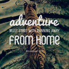 Inspiration quote #travel #quotes  #travelingilove