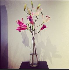 Pink lillies in bottle vase