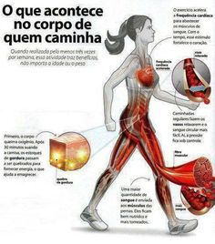 Dra Aline Lamarco - Nutricionista Clínica, Esportiva, Gestacional e Infantil: Benefícios das caminhadas
