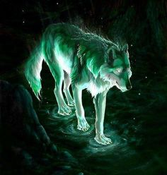 The Star Wolf. The star wolf is symbolic for guidance. Magical Creatures, Fantasy Creatures, Beautiful Creatures, Pet Anime, Anime Wolf, Wolf Spirit, My Spirit Animal, Fantasy Wolf, Fantasy Art