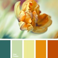 Color Palette No. 974 The post Color Palette No. 974 appeared first on Decoration.