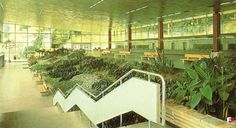 Pijalnia Główna, Krynica Zdrój, 1975 1975, Architecture, Plants, Polish, Photos, Arquitetura, Vitreous Enamel, Nail Polish, Planters