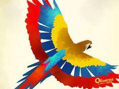Guacamaya en el arte de Olivares!