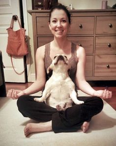 Yoga Time with a Very Zen French Bulldog.