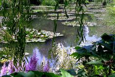 Monet's Garden at Giverny, Normandy