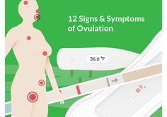 We asked women who are trying to conceive, if they were aware of their natural fertility signs, only said yes. Learn the 12 signs of ovulation. Ovulation Signs, Ovulation Symptoms, Ovulation Test, Trouble Getting Pregnant, Trying To Get Pregnant, How To Conceive, Trying To Conceive, Pregnancy Signs, Pregnancy Workout