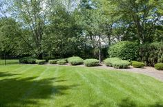 Landscape & Design: A Bergen County-based organic lawn care company .