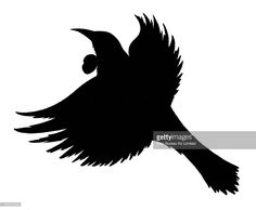 A simple black silhouette of the New Zealand native bird Tui.