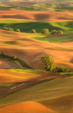I like this - metronudes: Layer Cake by Aaron Reed