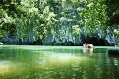 The Puerto Princesa Underground River is located in a jungle covered mountain range