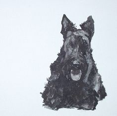 SCOTTISH-TERRIER-INK-ON-CANVAS-12-X-12-INCHES