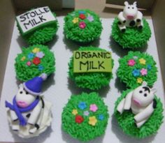 Fonterra  Cup Cakes