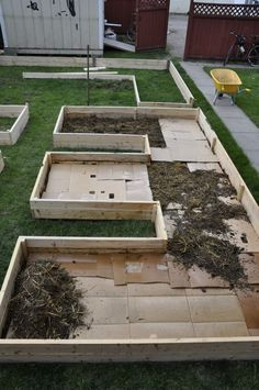 wanted a layered, or 'lasagna' garden, and began with cardboard mulch to kill his lawn. After that--a layer of straw/manureNorm wanted a layered, or 'lasagna' garden, and began with cardboard mulch to kill his lawn. After that--a layer of straw/manure Raised Vegetable Gardens, Vegetable Gardening, Home Vegetable Garden Design, Planting Vegetables, Garden Types, Farm Gardens, Garden Farm, Garden Mulch, Box Garden