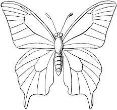 Butterfly Outline Coloring Page Butterfly Coloring Pages Free Coloring Pages. Butterfly Outline Coloring Page Coloring Page Outline Of Cartoon Little . Butterfly Outline, Butterfly Clip Art, Butterfly Drawing, Butterfly Template, Glass Butterfly, Butterfly Pattern, Monarch Butterfly, Drawings Of Butterflies, Printable Butterfly
