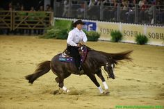 Reining - Andrea Fappani - August 30th Copyright : Sindy Thomas