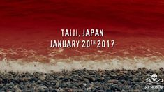 Taiji, Japan - Dolphins for Cash  Published on Jan 27, 2017 Taiji, Japan. Where dolphins are seen as commodities, dead or alive.