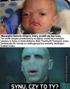 Read 2 from the story Czarny Humor Meme by (pietrucha) with reads. Harry Potter Fan Art, Harry Potter Memes, Polish Memes, Weekend Humor, Funny Mems, Star Vs The Forces Of Evil, Wtf Funny, Funny Comics, Funny Photos