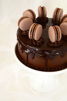 ... luxe chocolate cake with glossed ganache and chocolate macarons ...
