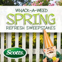 Enter for your chance to win $5,000 in Scotts products and more in the Whack-a-Weed Spring Refresh Sweepstakes!