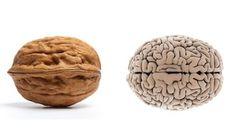 Tomar Grasas de Calidad Influye en la Salud Mental. Leer aquí: http://www.suplments.com/consejos/tomar-grasas-de-calidad-influye-en-la-salud-mental/