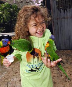 Busch Gardens Summer Camp
