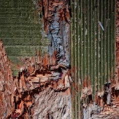 Stone Photograph - Mother Earth Colors Abstract by Lee Craig Best Abstract Paintings, Abstract Art For Sale, Abstract Images, Abstract Photography, Fine Art Photography, Decay Art, Earth Color, Textile Fiber Art, Green Art