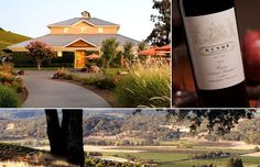 went to sonoma (and this winery) for the first time last week...need to go back