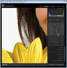 I was recently asked by photographer Rhonda Pierce to look at an image that she'd taken and to suggest how the background could be lightened to white in Lightroom. This image raises an interesting question for anyone involved in post production and trying to understand when to use Lightroom and when to use Photoshop for …