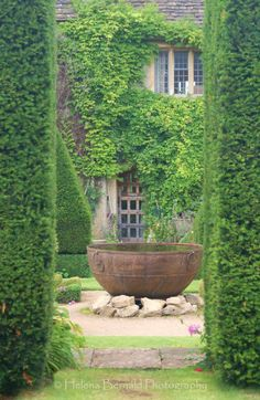 The Swenglish Home - beautiful climbing ivy and large cauldron. I have a cauldron I need to do something with!