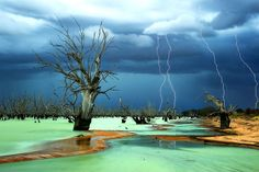 stunning pictures of nature - Google Search