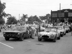 Race cars lined up waiting for inspection. 1965 Sebring