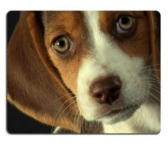 Beagle Puppy Dog Serious Face Mouse Pads Customized Made to Order Support Ready 9 7/8 Inch (250mm) X 7 7/8 Inch (200mm) X 1/16 Inch (2mm) High Quality Eco Friendly Cloth with Neoprene Rubber MSD Mouse Pad Desktop Mousepad Laptop Mousepads Comfortable Computer Mouse Mat Cute Gaming Mouse pad ** Check this awesome product by going to the link at the image.