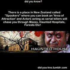 WHOA I'VE ALWAYS WANTED TO GO TO NEW ZEALAND ANYWAYS... JUST ADD TO THE LIST