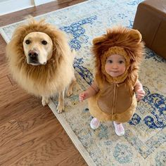 Cutest Babies Ever, Cute Babies, Cute Dogs And Puppies, I Love Dogs, Labrador Breed, Funny Animals, Cute Animals, Girls Cuddling, Cute Lion