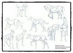 25 belos desenhos de animais para a sua inspiração 10