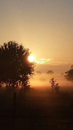 Der perfekte Morgen in Ostfriesland