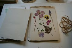 Nature Crafts: How To Make Your Own Flower Press