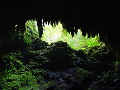 Puerto Rico´s Rio Camuy Cave Park with deep caves, a huge sinkhole and the third largest underground river in the world.