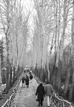 Wonderful Tehran - http://www.travelandtransitions.com/destinations/destination-advice/asia/