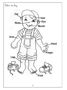 body parts coloring pages printables high quality coloring pages - Coloring Books For Toddlers