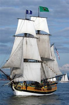 Lady Washington |  Brig Old Sailing Ships, Ship Drawing, Sailboat Painting, Full Sail, Wooden Ship, Tug Boats, Sail Away, Wooden Boats, Model Ships