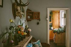 design is mine : isn't it lovely?: SPACE: ANNA POTTER'S HOME. | vintage, antique, flora, bones