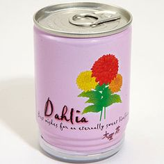 Flower in a can? Absolutely! Just pop the lid and add water, sun and a little bit a love to get a pretty bloom :)