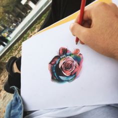 Rosa colorata multicolor color watercolor paint draw sketch disegno matite rose by edwin basha