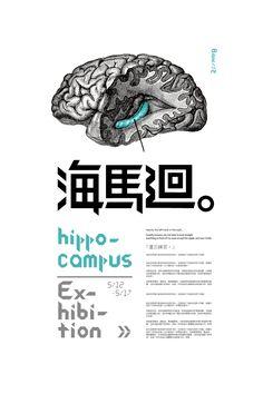 Hippocampus Exhibition -
