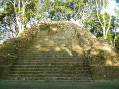 Belize jungle   Belize Jungle Dome: Cahal Pech